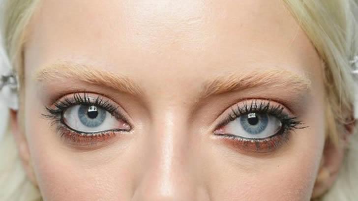 人类的眼睛为什么长在前面?而不是头部两侧